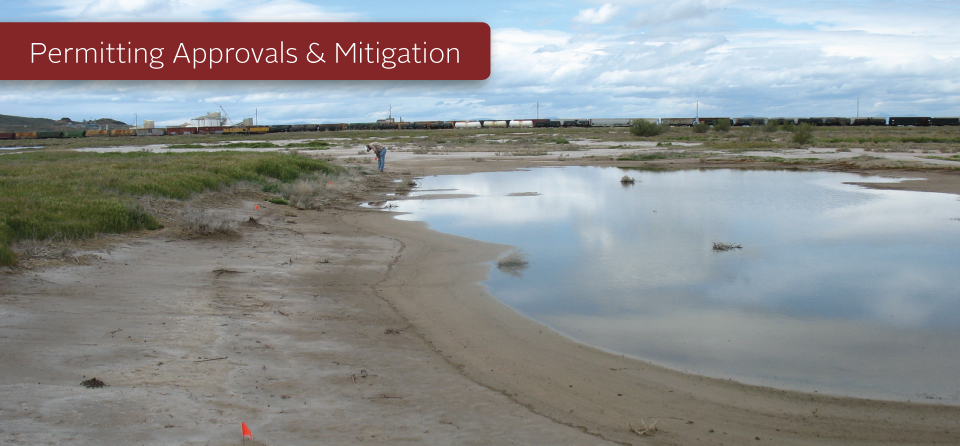 Permitting Approvals and Mitigation