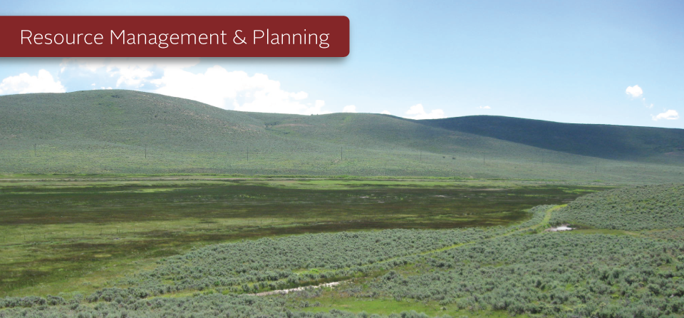 Resource Management and Planning