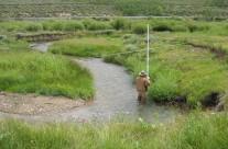 Stream Corridor Assessments
